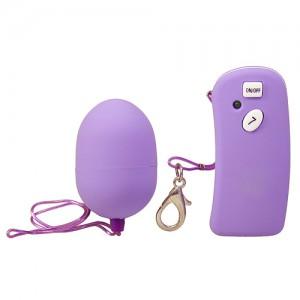 Wireless Egg